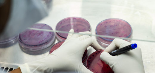 Best Microbiology colleges in Bangalore, India
