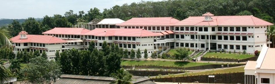 Viswajyothi College of Engineering and Technology